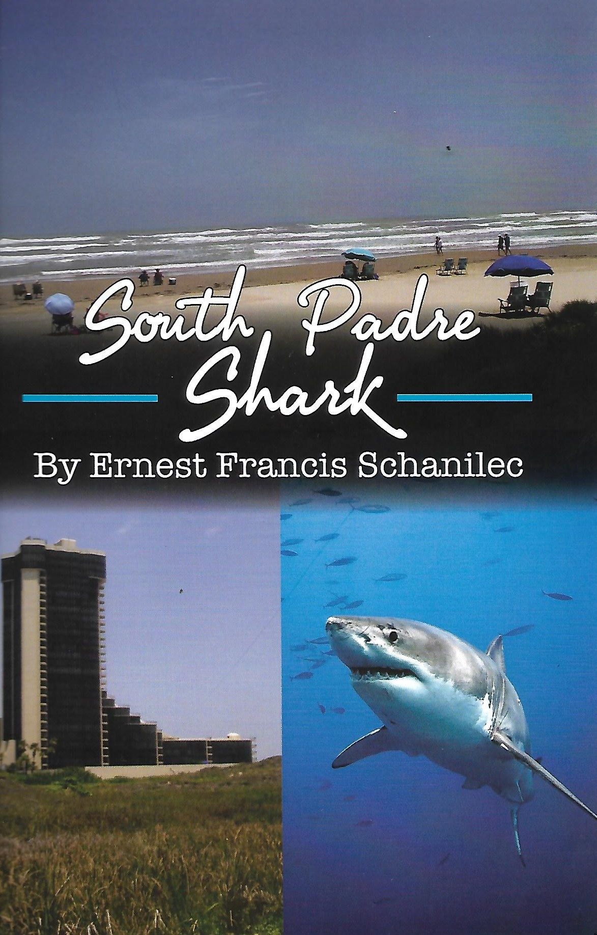 South Padre Shark